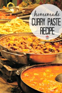 Curry in a Hurry – Homemade Curry Paste