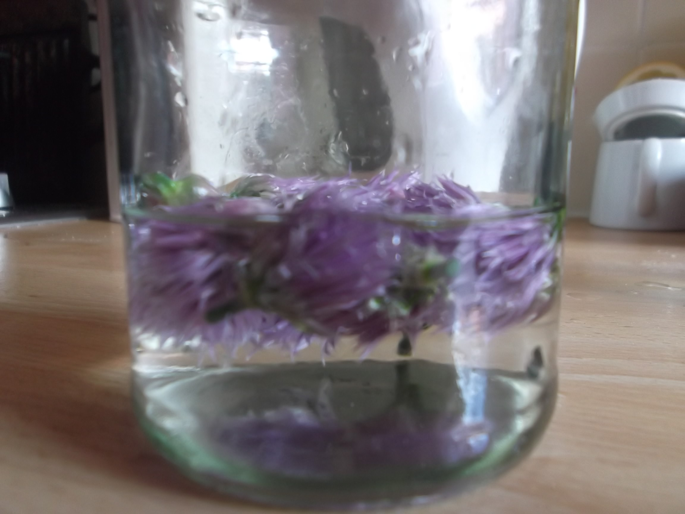 Chive Blossom Vinegar - Mortgage Free in Three