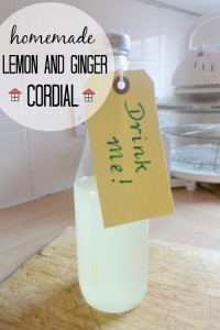 This refreshing and immune system inspiring lemon and ginger cordial is easy to make and hits the spot. This would make a fantastic gift idea, too!